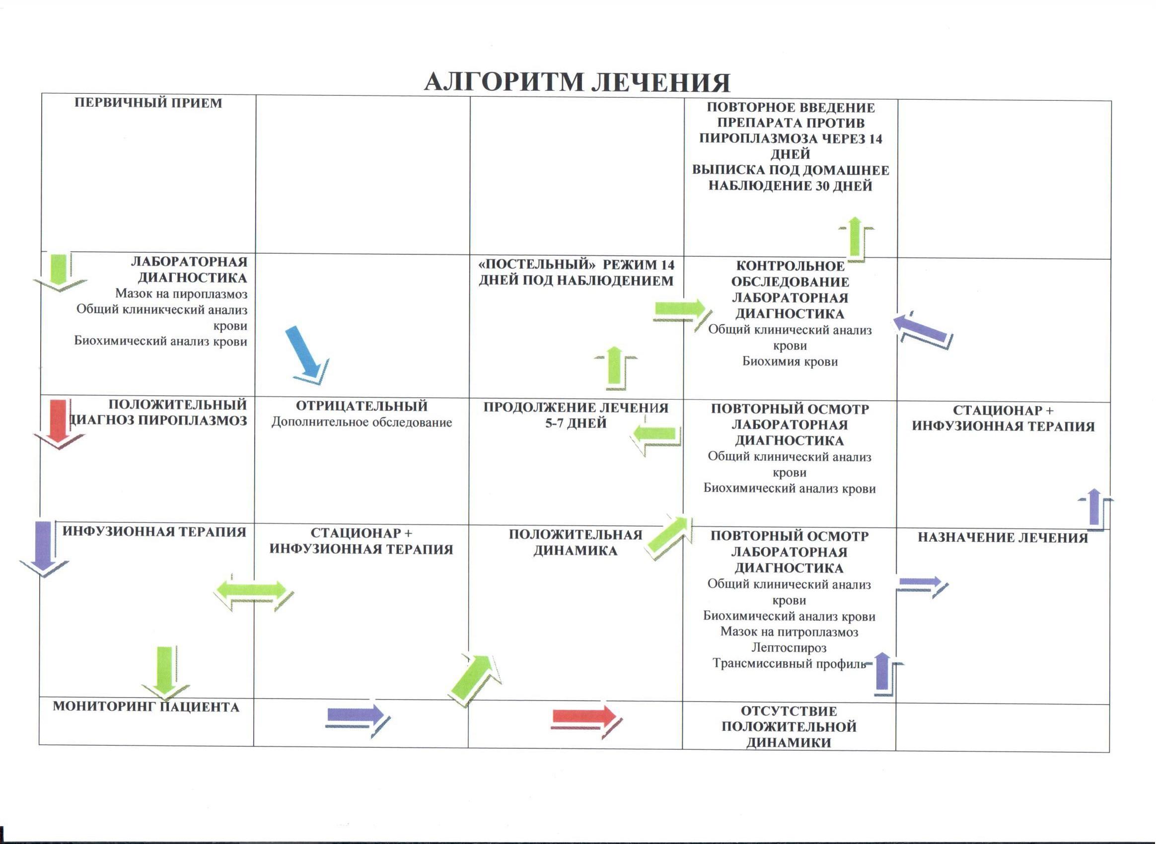 Как меняется анализ крови при пироплазмозе Справка формы 095 из поликлиники в питере
